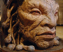Face of Boe